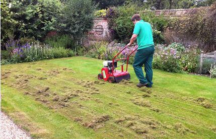 Wertykulacja i aeracja trawnika kiedy
